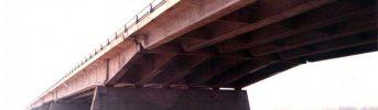 Pile in alveo - Vista delle pile durante una piena del fiume Po